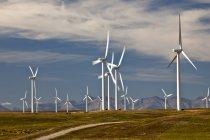 Molinos de viento generando energía cerca de Fort Macleod, Alberta, Canadá. - foto de stock
