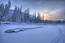 Sunset in sky over frozen Wheaton River with walking tracks in Whitehorse, Yukon, Canada. — Stock Photo