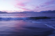 Whaler island shoreline at dusk, Clayoquot Sound, Vancouver Island, British Columbia, Canada. — Stock Photo