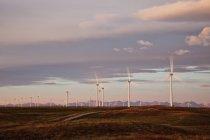Mulini a vento di produzione di energia elettrica operanti all'alba vicino a Fort Macleod, Alberta, Canada. — Foto stock