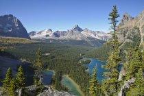 Пташиного польоту озеро Ohara і озеро Мері в його Національний парк, Британська Колумбія, Канада — стокове фото
