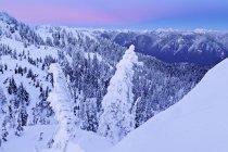 Alba nel paesaggio innevata di Mount Seymour Provincial Park, British Columbia, Canada — Foto stock