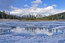 Palliser Range and Cascade Pond in woodland of Banff National Park, Alberta, Canada — Stock Photo