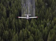 Agricultural plane spraying chemicals over spruce forest, British Columbia, Canada. — Stock Photo