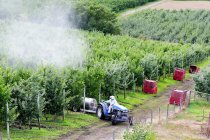 High angle view of unrecognizable man riding tractor and spraying apple orchard in Lake Country, British Columbia, Canada — Stock Photo