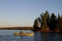Uomo remando canoa sul lago di origine, Algonquin Park, Ontario, Canada. — Foto stock