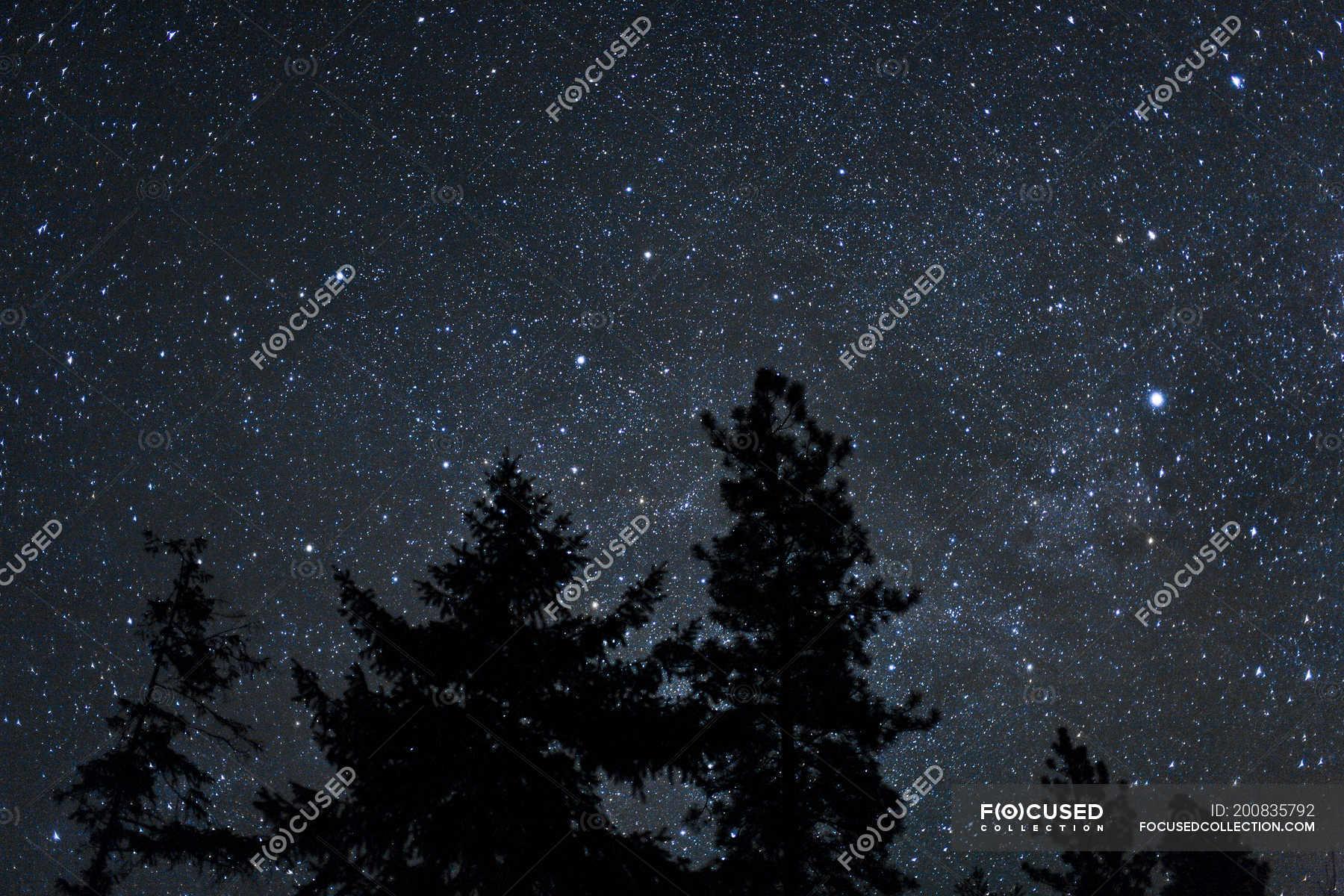 stars tumblr - HD1200×800