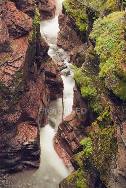 Agua de arroyo en Red Rock Canyon, Waterton Lakes National Park, Alberta, Canadá - foto de stock