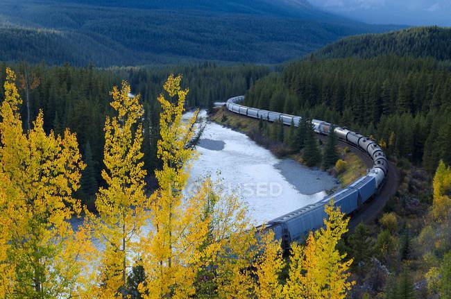 Train de marchandises à courbe de Morant, Parc National Banff, Alberta, Canada — Photo de stock