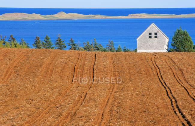 Campo, fattoria e mare vicino al fiume French, Isola del Principe Edoardo, Canada — Foto stock