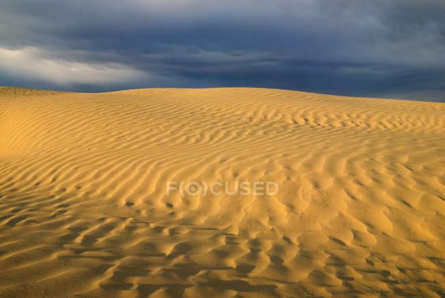 Modèle de sable naturel de Great Sandhills, Saskatchewan, Canada — Photo de stock