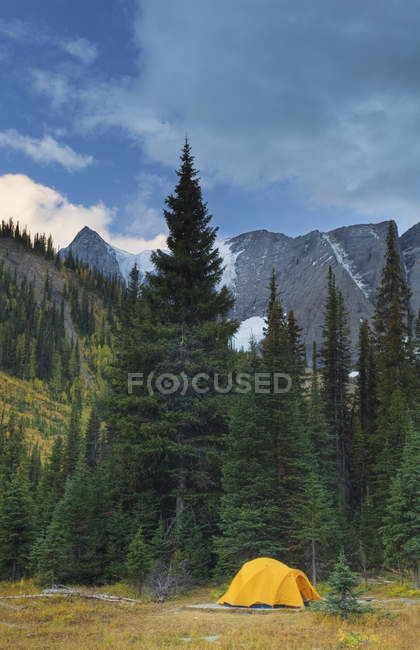 Gelbe Zelt bei Tumbling Creek Campingplatz, Rockwall Trail, Kootenay Nationalpark, British Columbia, Kanada — Stockfoto