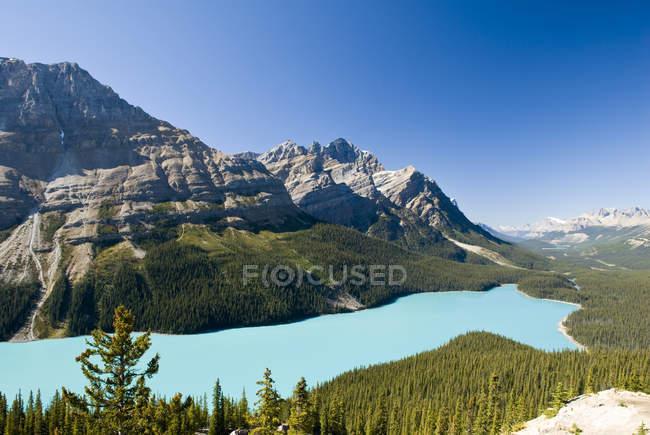 Paysage montagneux avec eau turquoise du lac Peyto, parc national Banff, Alberta, Canada — Photo de stock