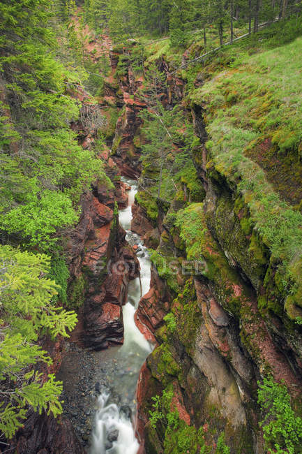 Red Rock Canyon of Waterton Lakes National Park in Alberta, Canada. — Stock Photo