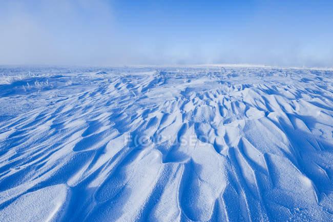 Derive di neve spazzate dal vento nella prateria ghiacciata del Saskatchewan meridionale, Canada — Foto stock