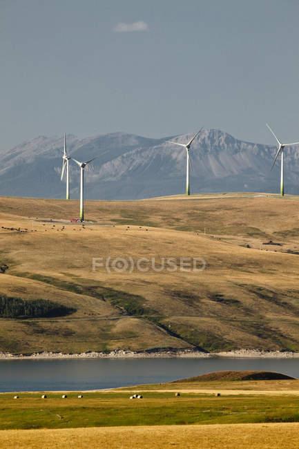 Энерговагоны мельницами возле Пинчер-Крик, провинция Альберта, Канада. — стоковое фото