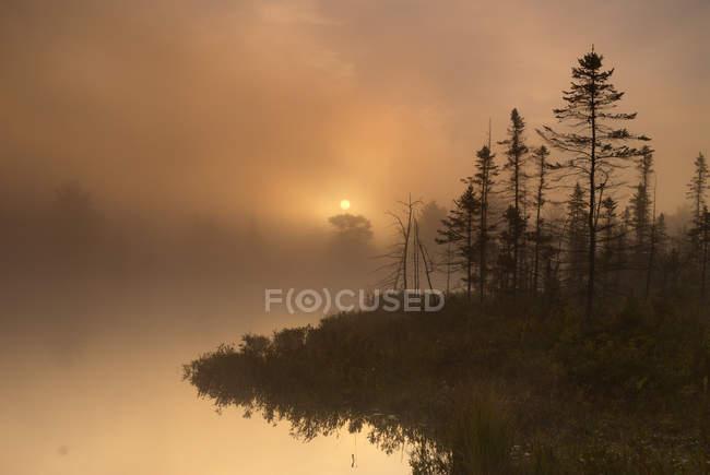 Matin sinistre décor automnal sur Highland Pond, Torrance Barrens, Muskoka, Ontario, Canada — Photo de stock