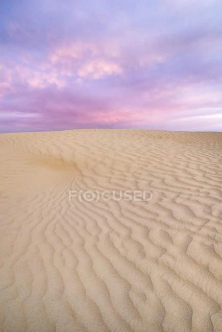 Песчаные дюны природный узор Грейт-Сандхиллс, Саскачеван, Канада . — стоковое фото