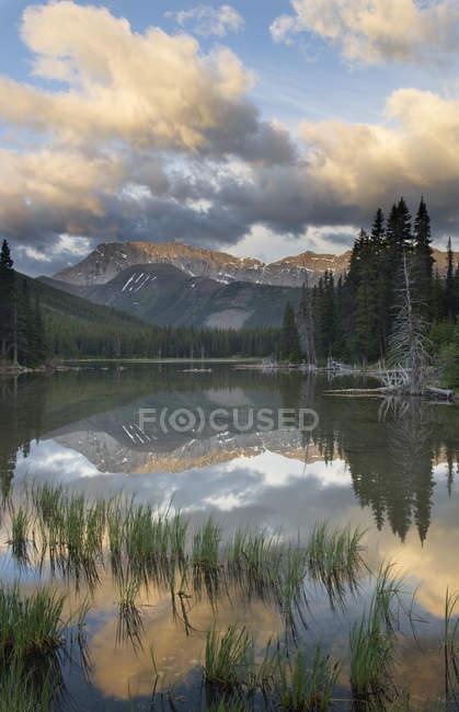 Lago de montanha em Kananaskis Elk gama, Elbow Lake, país, Alberta, Canadá — Fotografia de Stock