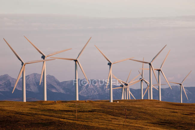 Wind power turbines near Pincher Creek, Alberta, Canada. — Stock Photo