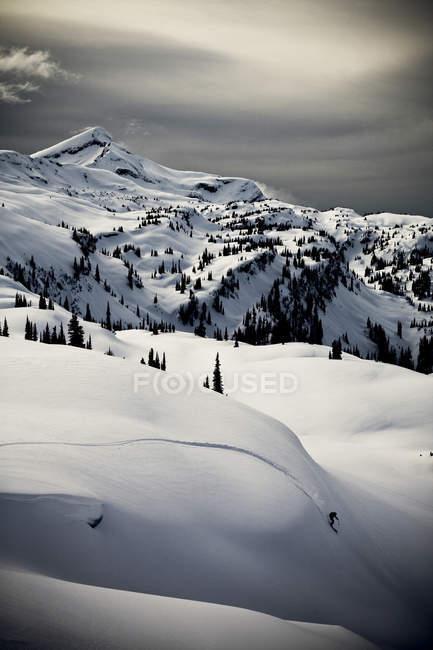 Homem esquiando pó fresco enquanto esqui serrano nas montanhas Monahees, Colúmbia Britânica, Canadá — Fotografia de Stock