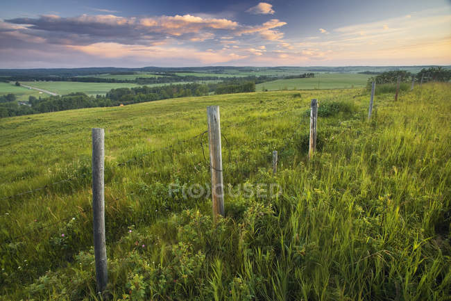 Pasture and rural fence near Bottrell, Alberta, Canada — Stock Photo