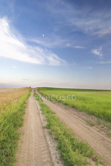 Camino de tierra a través de pastizales en el sur de Saskatchewan, Canadá - foto de stock