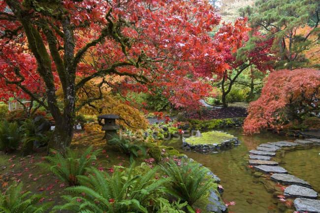 Japanese Garden in autumn at Butchart Gardens, British Columbia, Canada — Stock Photo