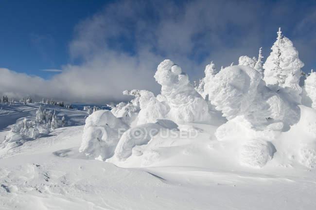 Призраки снег на солнце вершин горнолыжного курорта в драматических зимний пейзаж вблизи Kamloops, Британская Колумбия Канада — стоковое фото