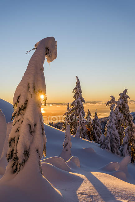Winter sunset in Mount Seymour Provincial Park, British Columbia, Canada — Stock Photo