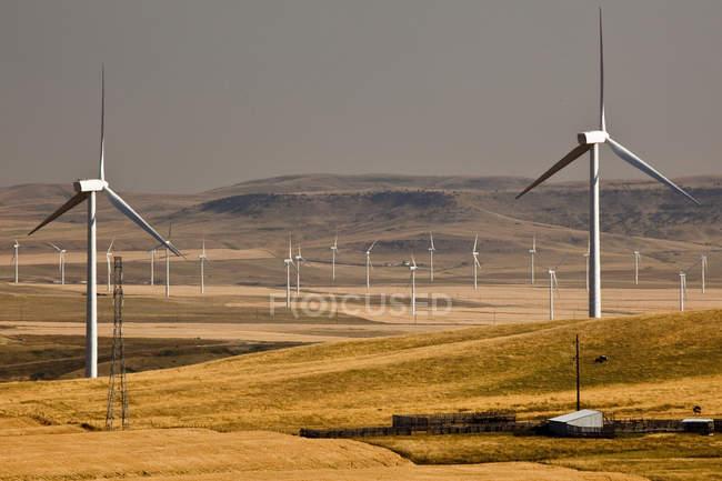 Moinhos de vento geradores de energia perto de Pincher Creek, Alberta, Canadá . — Fotografia de Stock