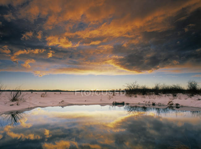 Prairie slough near Rocky Mountain House, Alberta, Canada — Stock Photo