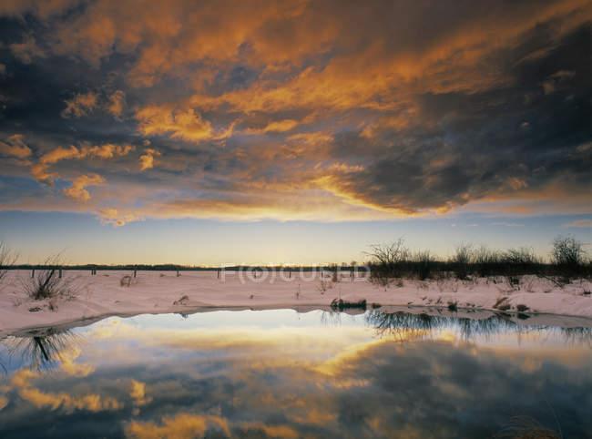 Pradaria slough perto de Rocky Mountain House, Alberta, Canadá — Fotografia de Stock