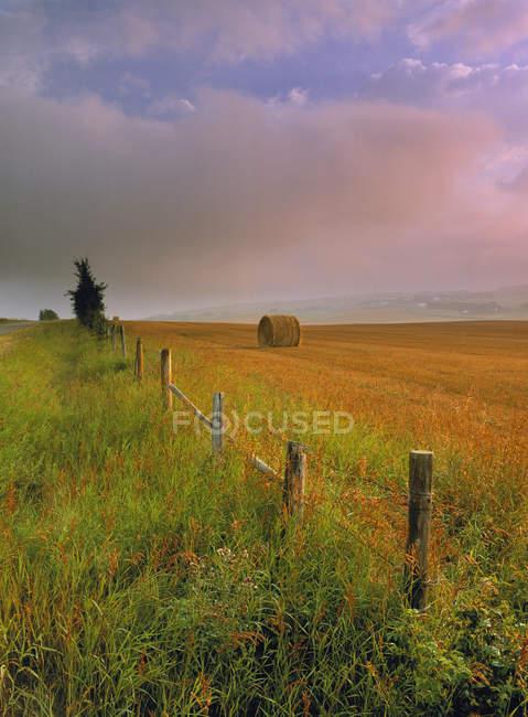 Сельский забор и сенокос рядом с Кремоной, Альберта, Канада . — стоковое фото