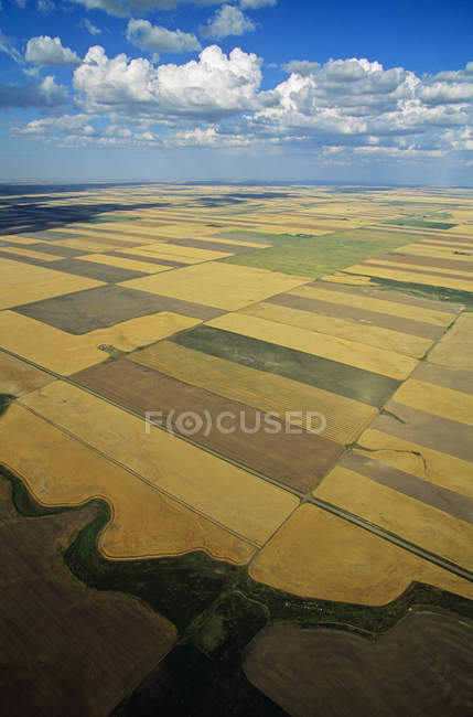 Aerial rural scene of farmland of saskatchewan, Canada. — Stock Photo