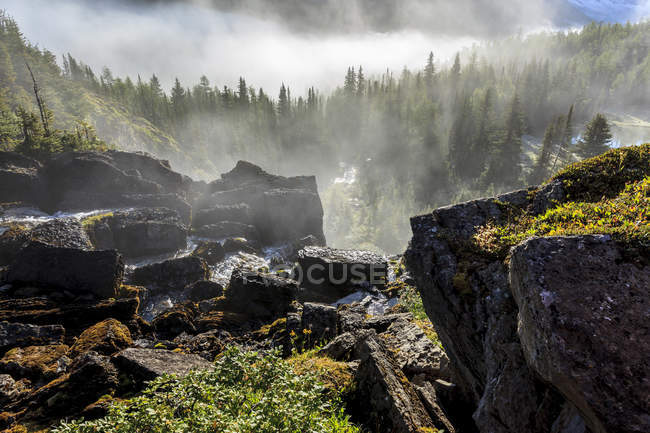 Baker Creek Wasserfall über Felsvorsprung in Skoki Valley Gegend von Banff Nationalpark, Alberta, Kanada — Stockfoto