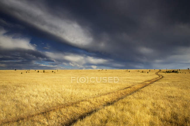 Storm clouds over prairie in grassland of British Columbia, Canada — Stock Photo