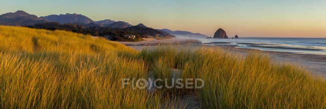 Grassy shore and Haystack Rock in Cannon Beach, Oregon, USA — Stock Photo