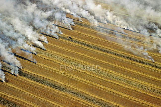 Veduta aerea delle colture residue che bruciano a Manitoba, Canada . — Foto stock