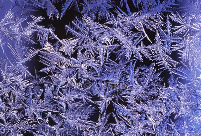 Detalhe da geada do inverno cristalizado na janela, quadro completo — Fotografia de Stock