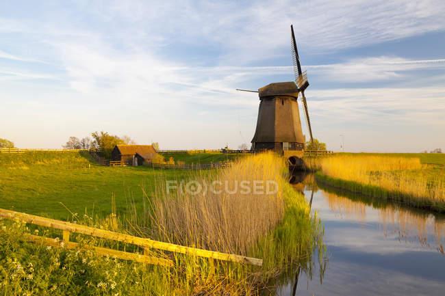Ветряная мельница в сельской сцены в Шермерхорн, Северная Голландия, Нидерланды — стоковое фото