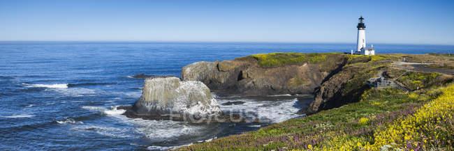 Якина головы Маяк на цветочной поляне в штате Орегон, США — стоковое фото