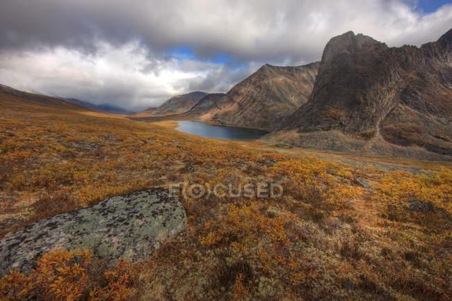 Bemooste herbstliche Prärie des Klondike-Tals mit einem Teichsee in der Ferne, Yukon, Kanada — Stockfoto