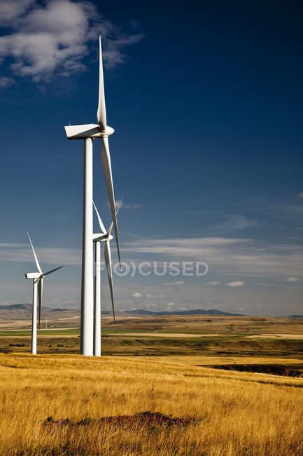 Power-generating windmills near Pincher Creek, Alberta, Canada. — Stock Photo