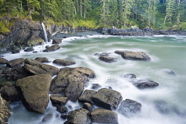 Creek along Juan De Fuca Trail at Sombrio Beach, Vancouver Island, British Columbia, Canada. — Stock Photo