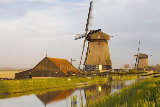 Molinos de viento en la escena rural en Schermerhorn, Holanda Septentrional, Países Bajos - foto de stock
