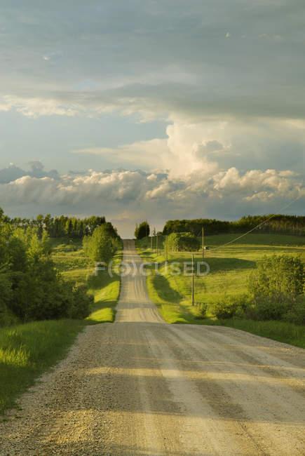 Camino del campo cerca de Cochrane, Alberta, Canadá - foto de stock