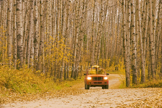 Truck on gravel road, Prince Albert National Park, Saskatchewan, Canada — Stock Photo