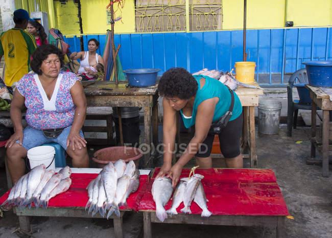 Frauen am Fischstand in Marktszene von Iquitos in Peru — Stockfoto