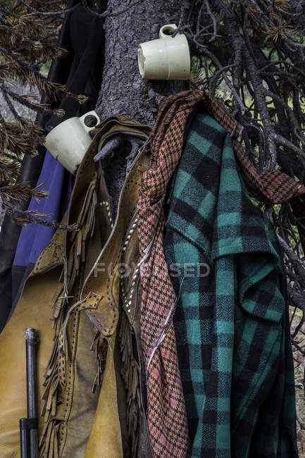 Horse outfitters gear and rifle on tree, close-up — Stock Photo